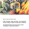 Fire History and Natural succession after forest fires in Pine-Oak forests-0