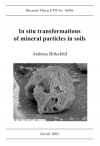 In situ transformations of minera particles in soils-0