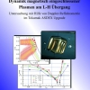 Dynamik magnetisch eingeschlossener Plasmen am L-H Übergang-0