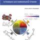 Übergangsmetallkomplexe mit basischen N-Donor-Liganden in Katalyse und medizinischer Chemie-0