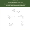 Bioactive Mandalarpyrones, their Derivatives and Further Novel Secondary Metabolites from Marine and Terrestrial Bacteria-553