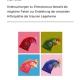 Untersuchungen zu Enterococcus faecalis als möglicher Faktor zur Entstehung der amyloiden Arthropathie der braunen Legehenne-0