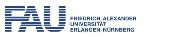 Universität Erlangen-Nürnberg - Lehrstuhl für Werkstoffe der Elektronik- und Energietechnik