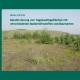 Rekultivierung von Tagebaufolgeflächen mit verschiedenen Bodenhilfsstoffen und Baumarten-0